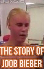 The Story of Joob Bieber (ORIGINAL Joob/Justin Bieber  Fanfiction) by infamousmoon