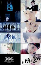 Kpop Song Lyrics (Cross Gene usw...) by BubbleGum_Maknae