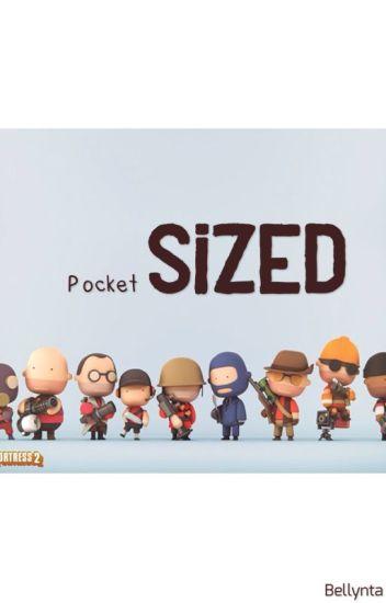 Pocket Sized (TF2 x Reader) - ⊱Ѧṧḯαη ℱαηḟ☤¢ Шґḯ☂ℯґ⊰ - Wattpad