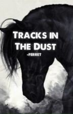 Tracks in the Dust (old) by sailorsbeauty