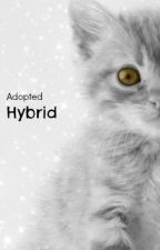 Adopted Hybrid (1D) by ChloeHumphreys6