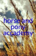 horse and pony accademy by LucyOwens