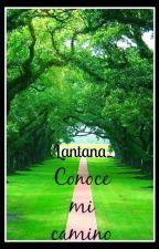Conoce mi  camino by Lantana_