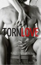 Torn Love by LittleRedLionxx
