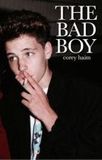 the bad boy ↠ c.h by valeriealanis