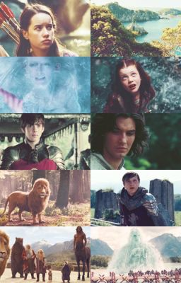 the big book of the chronicles of narnia x reader on hold
