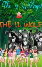 THE 9 ANGEL & THE 12 WOLF by kaisoo_sooyul