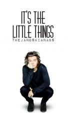 It's The Little Things ➸ h.s. by thejanoskianabs