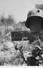 Из писем немецких солдат с Восточного фронта by BoevayaPodruga