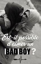 Est-il possible d'aimer un Bad boy ? (Terminée) by missxmxlon