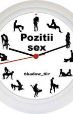 Pozitii sex by Vyzante