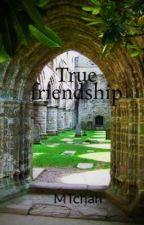 True friendship by MTchan