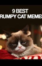 9 of the best grumpy cat memes by PolitePastel