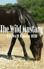 The Wild Mustang by Wolf-Queen-1010