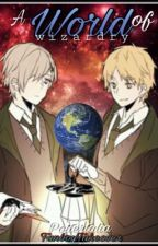 A World Of Wizardry (Hetalia Harry Potter crossover Fanfiction) -ON HOLD- by FanboyTakeover