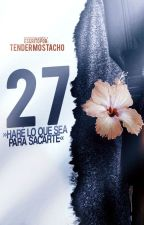 27. [Actualizaciones lentas] by tendermostacho