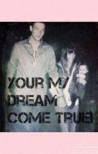 Your my dream come true!-FINCHEL by girlmeetsfinchel