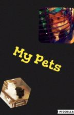 My Pets by DisneyChannelFangirl