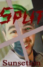 Split (Antisepticeye, Jacksepticeye, Darksepticeye x Reader) by Sunsetion
