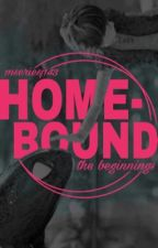 Home-Bound: The Beginnings (HTTYD) by MseriesJ143