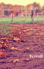 Because of Love by excel6