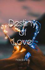 Destiny Of Love by HasdianKS
