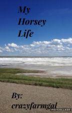 My horsey life by crazyfarmgal