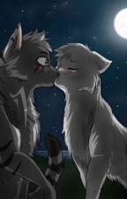 Warrior cat x reader by Lovewing714