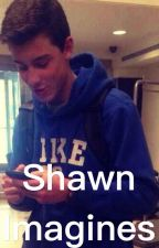 Shawn Imagines by shawnrise