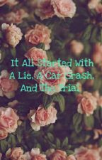 It All Started With A Lie, A Car Crash And The Trial by happyxendings_