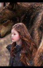 Twilight 6 by ehmarde