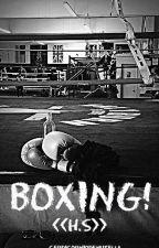 BOXING! <<H.S>> by CerdicornioDeNutella