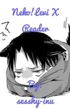 Neko!Levi X Reader by sesshy-inu