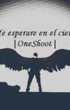 Te Esperare En El Cielo (JustinBieber Y Tu) One Shoot by yngmypaleskinfvs