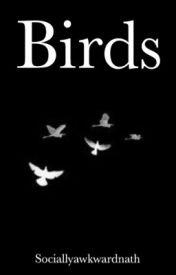 Birds [Luke Brooks] by sociallyawkwardnath