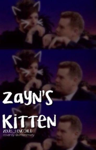 Zayn's Kitten | Zouis |
