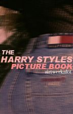 The Harry Styles Picture Book by sirtwerkalot
