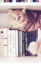 Kitap Tavsiyeleri☺☺☺ by adasdsds