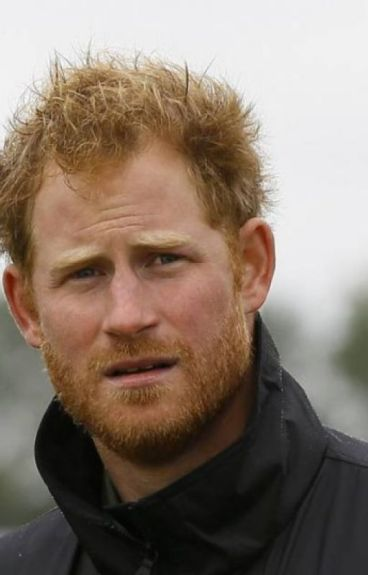 The Shield (Prince Harry fanfic #2)