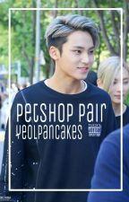 petshop pair | mingyu. by yeolpancakes