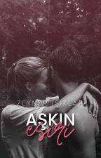 Aşkın Esiri (Esaret Serisi/3) by bookstealer