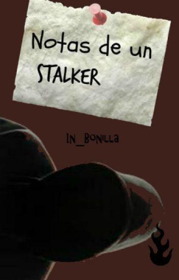Notas de un Stalker