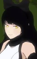 My Kitty Cat- M!Reader x Blake Belladonna by your-everyday-writer