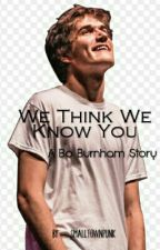 We Think We Know You (a Bo Burnham story) by smalltownpunk