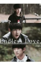 Endless Love by seulgiboo
