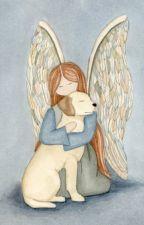 Ангел by -Lacky-