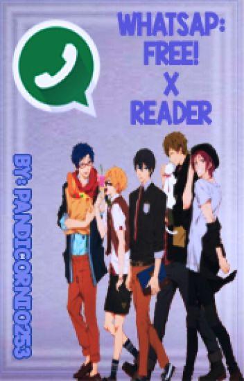 Free! Whatsapp (Free! x Reader)