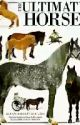 Horse Breeds And Facts by phephe45