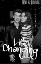 Life Changing (Shawn Mendes & Hailee Steinfeld) by xirdinax