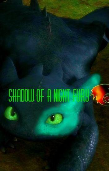Shadow of a Night Fury